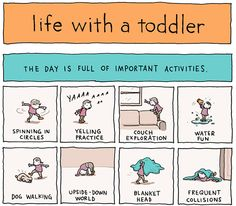 "Life with a Toddler - Replace ""dog"" with ""cat"" and this is life at our house!"