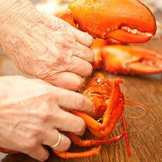 Learn how to cook the perfect lobster! We will give you all the instructions you need to cook a lobster like a professional chef. Live Lobster, How To Cook Lobster, Boiled Lobster Recipes, Learn To Cook, Food To Make, How To Cook Liver, Grilled Lobster, Island Food, Professional Chef