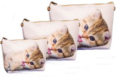 Conjunto de três bolsas com filhote de Gato