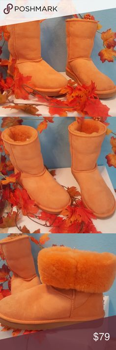 Sale! Classic short Ugg boots. Orange. Size 7. Get ready for the new season with these stylish Ugg boots. Authentic UGG Australia in classic short. Genuine leather upper, genuine sheepskin lining, Rubber Sole. Beautiful and unique orange color. Wear up or roll down for a different look. Have been worn with love. Please see pics. Still in great condition. Size 7. Ugg Shoes Ankle Boots & Booties