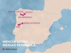 Mencia - Jaen wine regions of Spain and Portugal by Wine Folly Wine Tasting Near Me, Wine Coolers Drinks, Best Wine Clubs, Wine Folly, Sangria Wine, Spanish Wine, Wine Wednesday, Wine Delivery, Wine Country