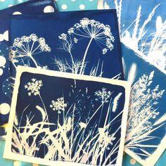 Cyanotype sur tissu à voir sur le blog de MamzelleJeanette !