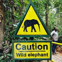 #caution #elephant #signal ... #señal de #cuidado con los #elefantes ... #vistoen un #bosque  #forest de #kerala #india