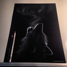 New concept for me, black paper and white charcoal ▪️▫️▪️copied from a photo on Google.