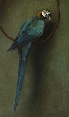 ~ artist : Louise C. Fenne - Blue Macaw, oil on canvas, 2013
