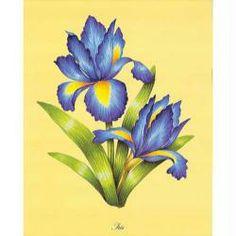 Image 3D Fleur - 2 iris 24 x 30 cm