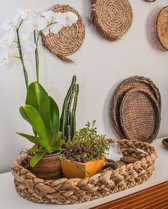 Home Staging, Wicker Baskets, Home Decor, Architects, Decorative Objects, Windows, Interior Decorating, Brazil, Shopping