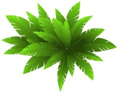 Green Plant Decoration PNG Clipart Image