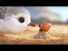 Piper Pixar Short Film ✪ Piper Full Movie ✪ Walt Disney Movies Full Length - YouTube