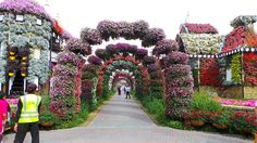 Dubai Miracle Gardens ~ 18 acres ~ World's Biggest Garden