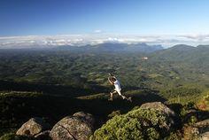 Pico do Anhangava - Serra do Mar - PR