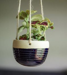 Suspend your succulents and houseplants in midair with this ceramic hanging planter, decorated in your choice of hue. Left unglazed on the inside, the ceramic planter can be hung indoors or out and adjusted to sit at just the right height for your space. As it's designed without drainage holes, we recommend adding pebbles or some gravel at the bottom before adding your greenery to help aerate roots and regulate excess water.