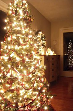 Traditional Old Fashioned C Lights Christmas Trees At Night