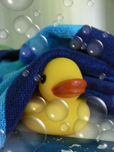 Took this pic, edited it and put this in my duckie themed bathroom. Yellow Balloons, Bubble Balloons, My Bubbles, Blowing Bubbles, Bathroom Kids, Splish Splash, Paint Shop, Rubber Duck, Textile Patterns