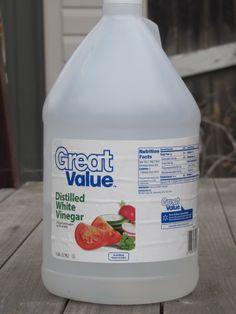Going Green: 10 Ways to Use Vinegar. I love vinegar! Household Cleaning Tips, Toilet Cleaning, Cleaning Hacks, Cleaning Supplies, Diy Cleaners, Cleaners Homemade, Green Cleaning, Spring Cleaning, Cleaning With White Vinegar
