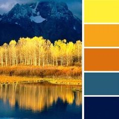 Bright yellow, blue and orange scheme, inspired by fall leaves
