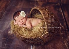 Sweet little baby A visited the studio a few weeks back and was a dream to work with. We were able to get several looks for her during the session! Little Babies, Little Ones, Cute Babies, Baby Kids, Newborn Pictures, Baby Pictures, Amazing Photos, Cool Photos, Newborn Photography