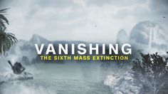 We're entering the Earth's sixth era of extinction -- and it's the first time humans are to blame. CNN introduces you to the key species and people who are trying to prevent them from vanishing.
