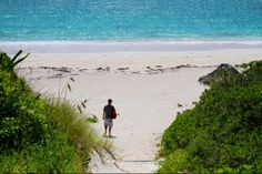 Harbour Island - Pink Sands Beach. Walking down to the beach near Sip Sip. @Out Islands of the Bahamas