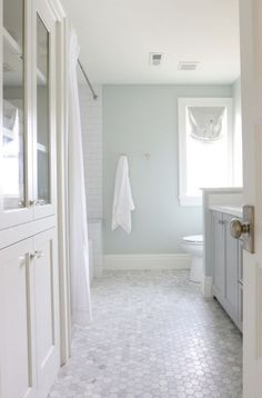 Sherwin Williams Sea Salt Is One Of The Best Paint Colours To Coordinate  With Marble.