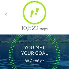 """My word for 2017 is """"strong"""". Today I made progress towards that goal by achieving my step goal & my hydration goal.  #strong #fitlife #fitbit #alta #steps #10kaday #hidrate #spark #hidratespark #buskemania"""