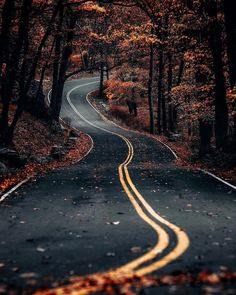 road through the autumn forest - beautiful images and wallpapers Beautiful Roads, Beautiful Landscapes, Beautiful Places, Beautiful Pictures, Beautiful Beautiful, Road Photography, Landscape Photography, Mood Of The Day, Autumn Forest