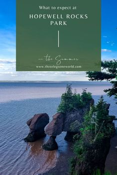 You don't want to miss Hopewell Rocks Park but here are a few things to expect during a summer visit. East Coast Canada, Hopewell Rocks, Mother Daughter Trip, New Brunswick, American Revolution, Hiking Trails, Geology, The Rock, Kayaking