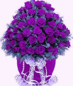 Every rose color is significant. If you had to give meaning to the beautiful purple flower arrangements you would be at a loss for words. They are deeply beautiful and unique. The purple rose is stun. Purple Love, All Things Purple, Purple Lilac, Shades Of Purple, Purple Stuff, Purple Colors, 50 Shades, Pretty Flowers, Purple Flowers