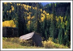 https://flic.kr/p/GMC4fw | Autumn Ghosts of Ophir Colorado - 1990 | The old ghost town of Ophir is located in the San Juan Mountains of southwest Colorado, south of Telluride and at the west base of the steep and rugged jeep road crossing Ophir Pass.  I took this photo in September, 1991 during a photo workshop based at the nearby Skyline Guest Ranch.