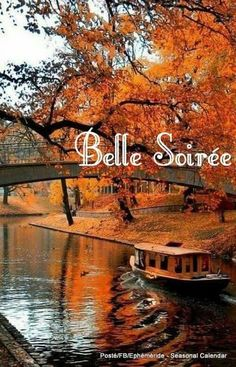 Le Site, Time Of The Year, Good Morning, Faith, Seasons, Teaching Ideas, Life, Beautiful, Fall Season