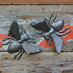 Haitian Wall Bees