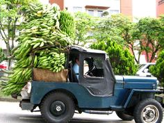 Jeep carregado com plantains.Source So, the Yipao is of a major significance in the everyday life of many Colombians. They dubbed it Yipao because of the local pronunciation of the word Jeep.