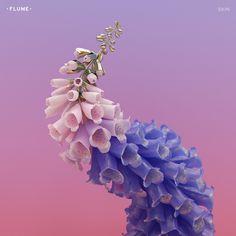 Skin: Flume: Amazon.fr: Musique