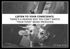 "LISTEN TO YOUR CONSCIENCE.  THERE'S A REASON WHY YOU CAN'T STAND WATCHING  ""YOUR FOOD"" BEING PRODUCED.  LIVE VEGAN."