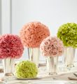 pink carnations, peach carnations, pink spray roses, pistachio mini carnations, and green hydrangea Carnation Centerpieces, Floral Centerpieces, Wedding Centerpieces, Wedding Decorations, Centrepieces, Centerpiece Ideas, Table Centerpieces, Arrangements Ikebana, Floral Arrangements