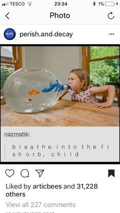 inhale the fishorb - Funny Troll & Memes 2019 Dankest Memes, Funny Memes, Hilarious, Lol, Excuse Moi, Quality Memes, Fresh Memes, Tumblr Funny, Funny Posts