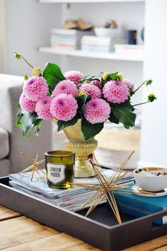 愛嬌のあるダリアのフォルムを、長く伸ばしたイエローの花が陽気に引き立ててくれます。