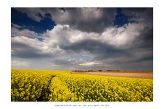 The fields of Topona'r - I by *DimensionSeven on deviantART