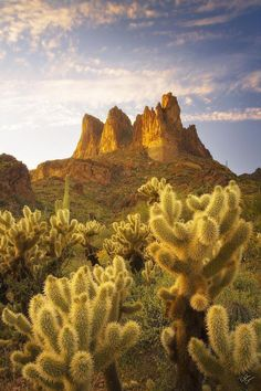Superstition Mountains / via Almost Light Fine Art Print