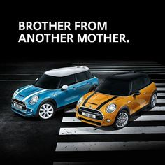 MINI Madness - Brother from another mother