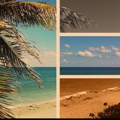 Jupiter Beach photo with iPhone app!