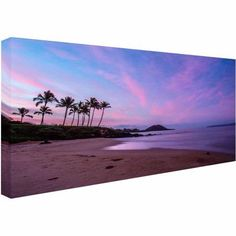 Trademark Fine Art Secret Beach Canvas Art by Pierre Leclerc, Size: 24 x 47, Multicolor