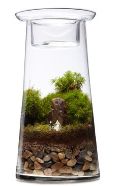 Terrarium centerpiece kit  - Create an unexpected wedding tablescape or floral display with this fabulously imagined bride and groom terrarium. Brooklyn artists Michelle Inciarrano and Katy Maslow create pint-sized snapshots in miniature greenhouses.     link