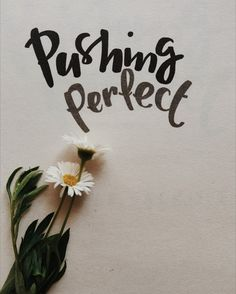 Book Review of Pushing Perfect by Michelle Falkoff is available on my blog!