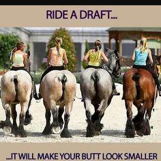 Ride a Draft!    #EECustomHorseShoes                          #decoratedhorseshoes #horses #horseshoes #etsy #etsysellers #welovehorsesandtheirshoes #muchloveandluck #horses #horseshoes  #countrydecor #westerndecor #giftideas