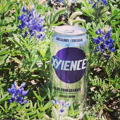 Showing our Texas pride, XYIENCE style. #XYIENCE #bluebonnets #Texas #spring  MY MOST FAVORITE DRINK EVER!  seriously,  Xyience is AMAZING!