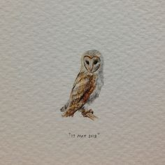 Day 137 : Barn owl. 9 x 24 mm. #365paintingsforants #barn #owl #watercolour #miniature (at Vredehoek)