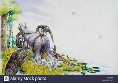 Dromaeosaurus Albertensis, Dromaeosauridae, Attacking A Ceratopsidae Stock Photo, Royalty Free Image: 86106909 - Alamy