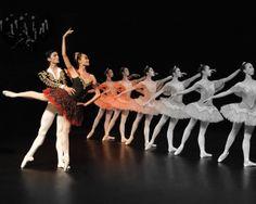 cursuri de balet fete - stop&dance Balerina, Dance, Dresses, Fashion, Dancing, Vestidos, Moda, Fashion Styles, Dress