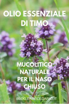 In Natura, Calendula, Doterra, Beauty Care, Natural Beauty, Herbs, Health, Nature, Herbal Medicine